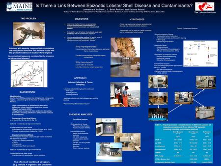 Is There a Link Between Epizootic Lobster Shell Disease and Contaminants? Lawrence A. LeBlanc 1, L. Brian Perkins, and Deanna Prince 1 1 School of Marine.