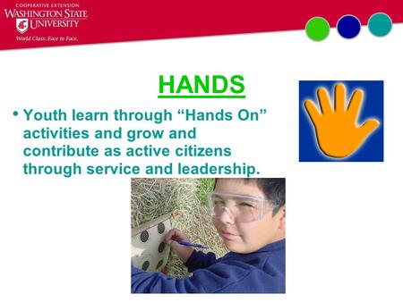 "HANDS Youth learn through ""Hands On"" activities and grow and contribute as active citizens through service and leadership."