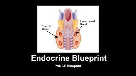 Endocrine Blueprint PANCE Blueprint. Diseases of Thyroid Hyperparathyroidism- Should be suspected when high serum calcium levels are detected Primary.