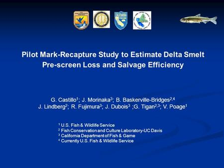 Pilot Mark-Recapture Study to Estimate Delta Smelt Pre-screen Loss and Salvage Efficiency G. Castillo 1 ; J. Morinaka 3 ; B. Baskerville-Bridges 2,4 J.
