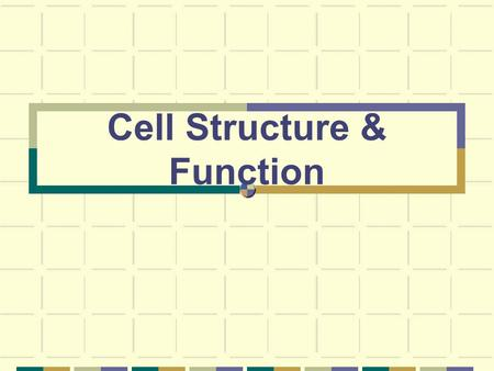 Cell Structure & Function. Objectives Discoveries important to the cell theory State the parts of the cell theory Identify the limiting factor on cell.