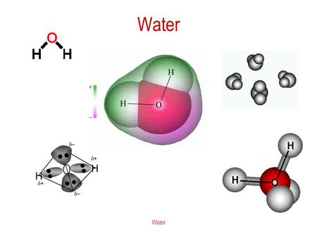 Water. Vibration Spectrum of Water Water The Water Molecule The occupied molecular orbitals (as electron probability distributions of the isolated molecule)