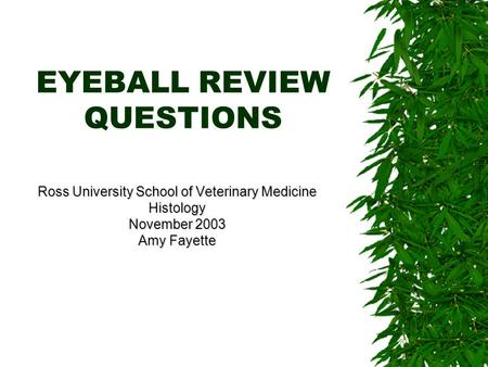 EYEBALL REVIEW QUESTIONS Ross University School of Veterinary Medicine Histology November 2003 Amy Fayette.