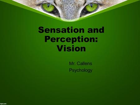 Sensation and Perception: Vision Mr. Callens Psychology.