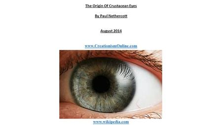 The Origin Of Crustacean Eyes By Paul Nethercott August 2014 www.CreationismOnline.com www.wikipedia.com.