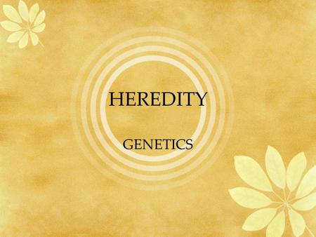 HEREDITY GENETICS. HEREDITY Heredity Is the passing of traits from parents to offspring. Genes on chromosomes control the traits that show up in an organism.