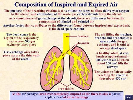 The purpose of the breathing rhythm is to ventilate the lungs to allow delivery of oxygen to the alveoli, and elimination of the waste gas carbon dioxide.
