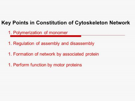 Key Points in Constitution of Cytoskeleton Network 1.Polymerization of monomer 1.Regulation of assembly and disassembly 1.Formation of network by associated.