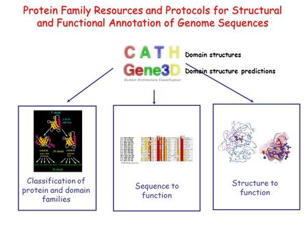 Classification of protein and domain families Sequence to function Protein Family Resources and Protocols for Structural and Functional Annotation of Genome.