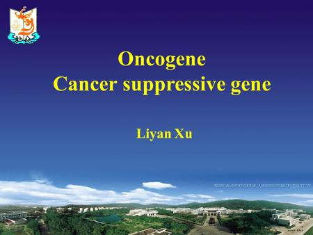 Liyan Xu Oncogene Cancer suppressive gene The basic concept 1 oncogene:  These genes code for proteins that are capable of stimulating cell growth and.