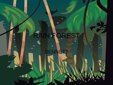 RAIN FOREST BENNETT Climate and Location South America, Central America, Central Asia, Australia and Africa. The average rainfall is 200 centimeters.