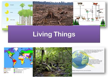 Living Things. Ecosystems An ecosystem is made up of biotic parts (living) and abiotic parts (non living). Ecosystems can vary in size e.g. from a small.