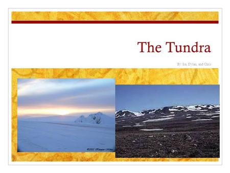 The Tundra By: Ira, Dylan, and Chris. World Location Europe North America Russia Alaska Canada Finland Antarctica Greenland.