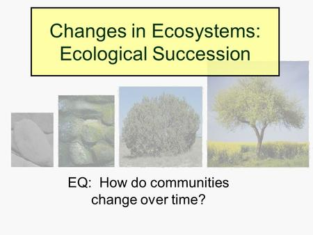 Changes in Ecosystems: Ecological Succession EQ: How do communities change over time?
