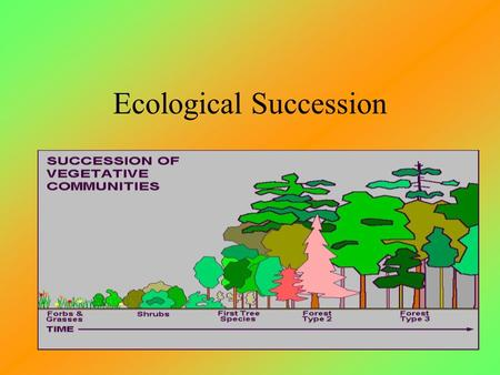 Ecological Succession Series of changes that occur during the development of an ecosystem the gradual replacement of one community by another until a.