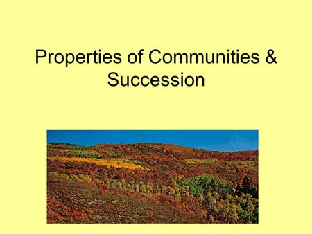 Properties of Communities & Succession. Communities & Species Diversity Remember… a community is a group of populations living together is a defined area.