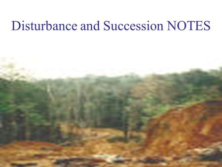 Disturbance and Succession NOTES