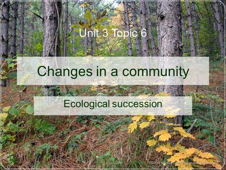 Changes in a community Ecological succession Unit 3 Topic 6.