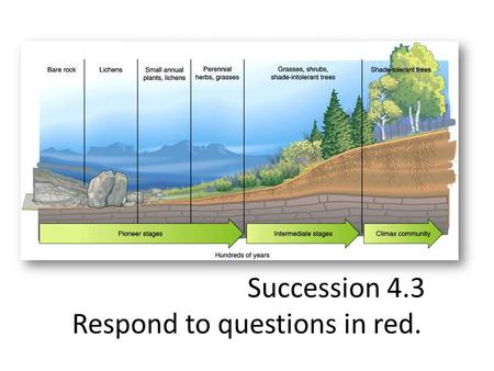Succession 4.3 Respond to questions in red.. Key Questions 1.How do communities change over time? 2.Do ecosystems return to normal following a disturbance?