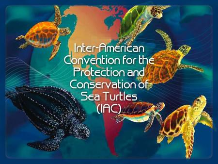 Inter-American Convention for the Protection and Conservation of Sea Turtles (IAC) A unique inter-governmental treaty that provides the legal framework.