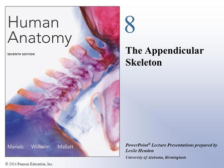 © 2014 Pearson Education, Inc. PowerPoint ® Lecture Presentations prepared by Leslie Hendon University of Alabama, Birmingham 8 The Appendicular Skeleton.