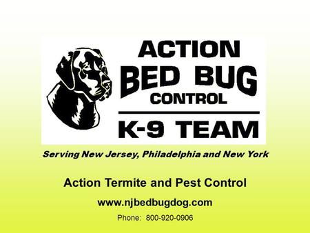 Action Termite and Pest Control www.njbedbugdog.com Phone: 800-920-0906 Serving New Jersey, Philadelphia and New York.