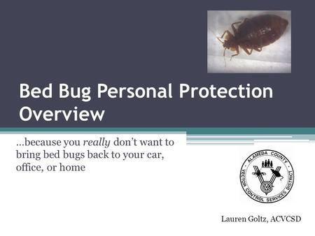 Bed Bug Personal Protection Overview …because you really don't want to bring bed bugs back to your car, office, or home Lauren Goltz, ACVCSD.
