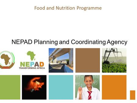 Food and Nutrition Programme NEPAD Planning and Coordinating Agency.