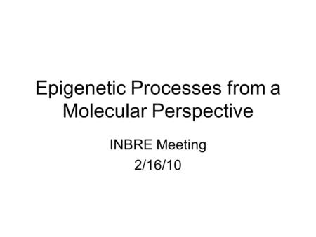 Epigenetic Processes from a Molecular Perspective INBRE Meeting 2/16/10.