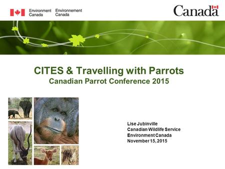 CITES & Travelling with Parrots Canadian Parrot Conference 2015 Lise Jubinville Canadian Wildlife Service Environment Canada November 15, 2015.