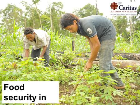 Food security in Cambodia. What is food security? Food security is reliable access to sufficient quantities of affordable, nutritious food.