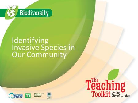 Identifying Invasive Species in Our Community. Identifying Species Currently there are 8.7 million identified species on Earth There are new species that.