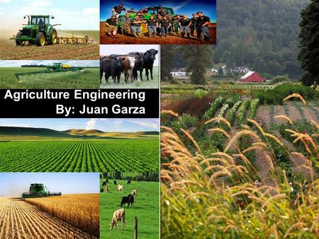 Agriculture Engineering By: Juan Garza. Us as agricultural engineers, get to conduct research and do experiments to upgrade the amount and quality of.