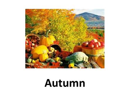 Autumn. What is Autumn? Autumn is the season that comes between summer and winter. Americans usually call this season fall because it is a time of falling.