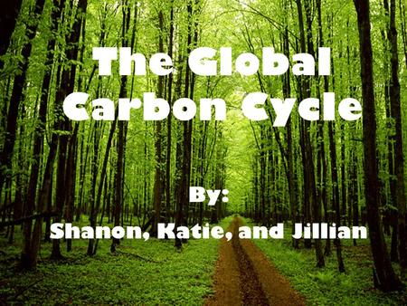 The Global Carbon Cycle By: Shanon, Katie, and Jillian.