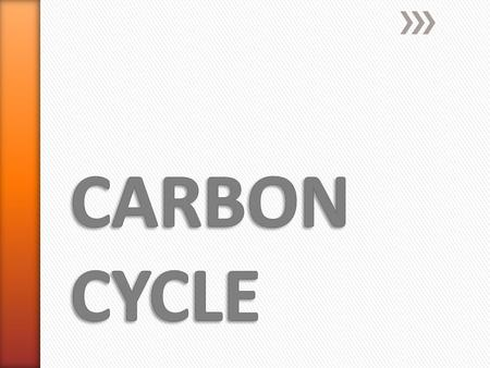 » CARBON CYCLE: Carbon is cycled between the atmosphere, land, water & organisms.