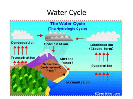 Water Cycle. Transpiration: Excess water is evaporated off the leaves of plants. Evaporation: Water in oceans, lakes, and ponds changes from liquid water.