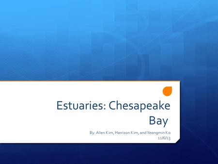 Estuaries: Chesapeake Bay By: Allen Kim, Harrison Kim, and Yeongmin Ko 11/6/13.