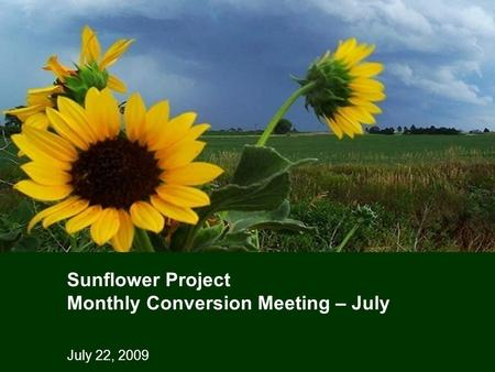 July 22, 2009 Sunflower Project Monthly Conversion Meeting – July.