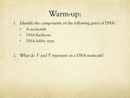 Warm-up: Identify the components of the following parts of DNA :