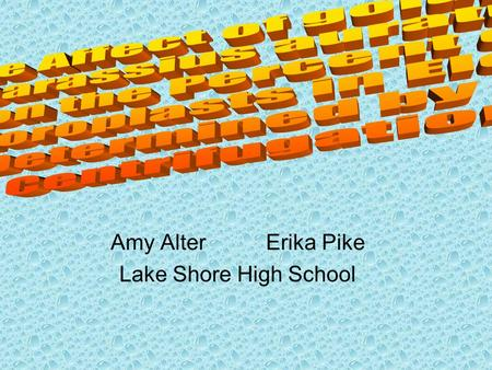 Amy Alter Erika Pike Lake Shore High School. Background Information Elodea densa –Water plant Carassius auratus –Common goldfish.