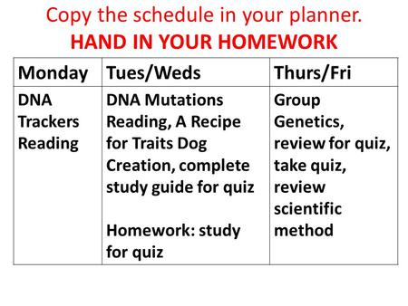 Copy the schedule in your planner. HAND IN YOUR HOMEWORK MondayTues/WedsThurs/Fri DNA Trackers Reading DNA Mutations Reading, A Recipe for Traits Dog Creation,