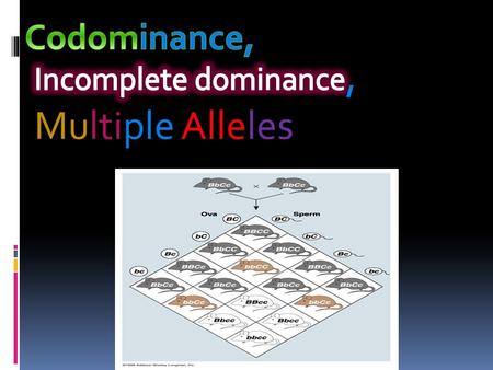 Codominance co- is together.  Refers to a relationship between two alleles of a gene. Both traits appear in an organism. They do not overpower each.
