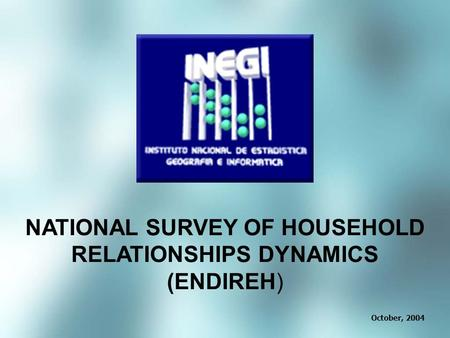 October, 2004 NATIONAL SURVEY OF HOUSEHOLD RELATIONSHIPS DYNAMICS (ENDIREH)