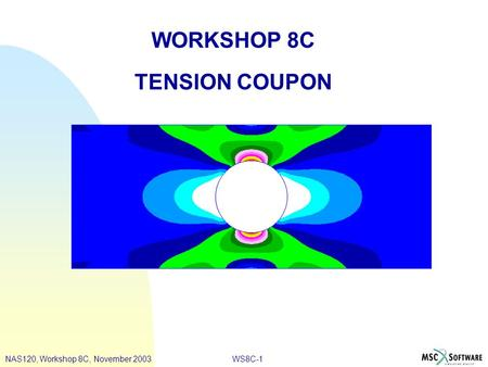 WS8C-1 WORKSHOP 8C TENSION COUPON NAS120, Workshop 8C, November 2003.