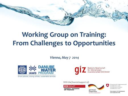 Working Group on Training: From Challenges to Opportunities Vienna, May 7 2014 With the financial support of: