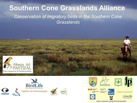 Southern Cone Grasslands Alliance Conservation of migratory birds in the Southern Cone Grasslands.