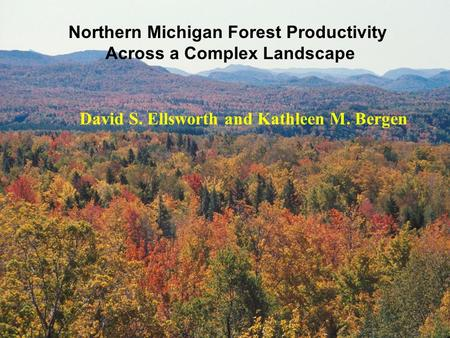 Northern Michigan Forest Productivity Across a Complex Landscape David S. Ellsworth and Kathleen M. Bergen.