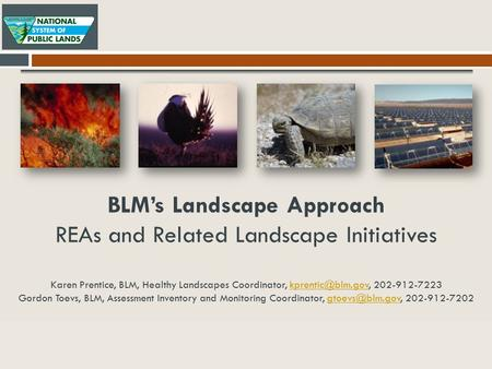 BLM's Landscape Approach REAs and Related Landscape Initiatives Karen Prentice, BLM, Healthy Landscapes Coordinator, 202-912-7223 Gordon.