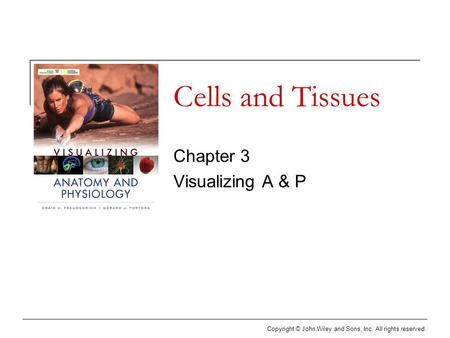 Copyright © John Wiley and Sons, Inc. All rights reserved. Cells and Tissues Chapter 3 Visualizing A & P.